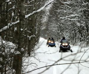 snowmobilers on trails