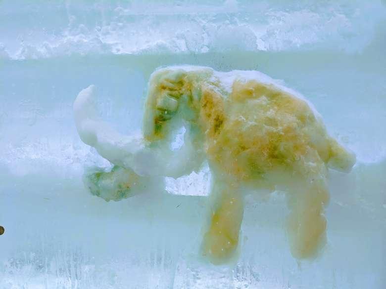 ice castle sculpture