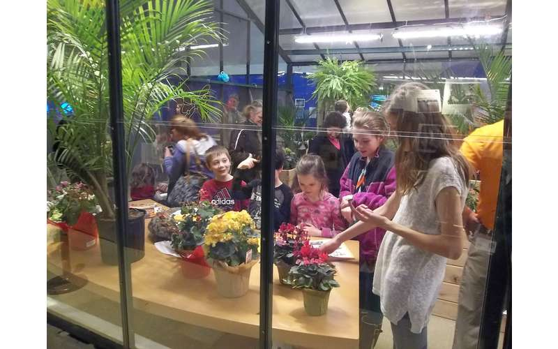 people inside the butterfly house
