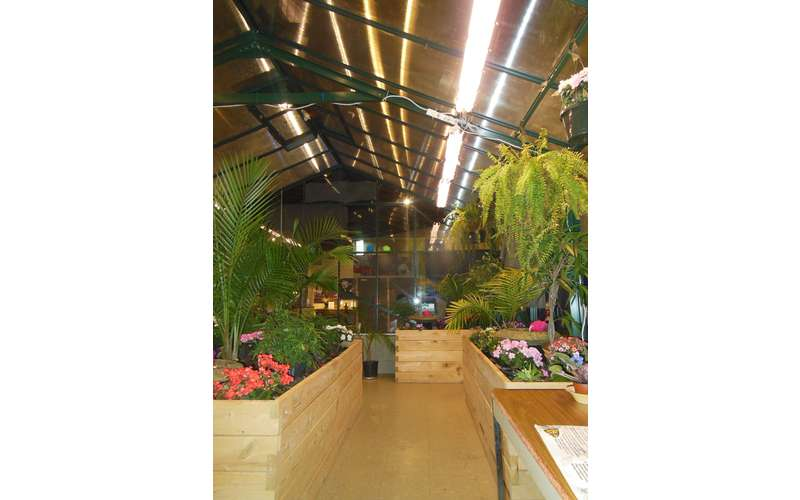 the inside of the butterfly house with plants and flowers