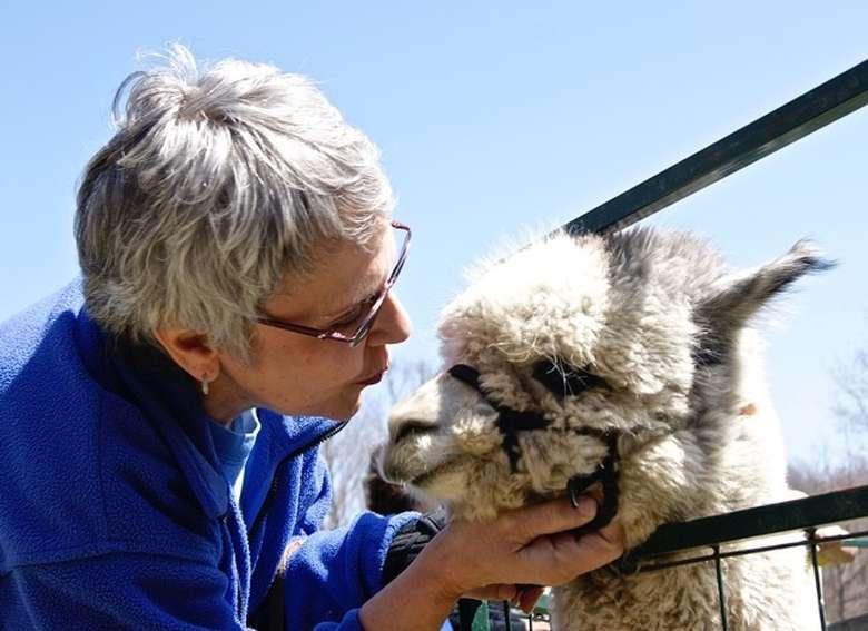 woman holding alpaca