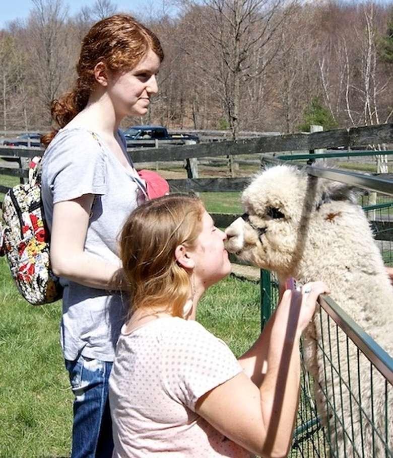 people meeting farm animal