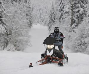 a snowmobiler riding through snowy landscape