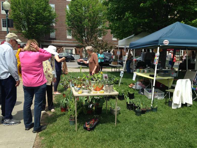 booths for plant sale