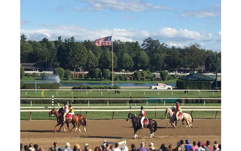 horses on dirt track