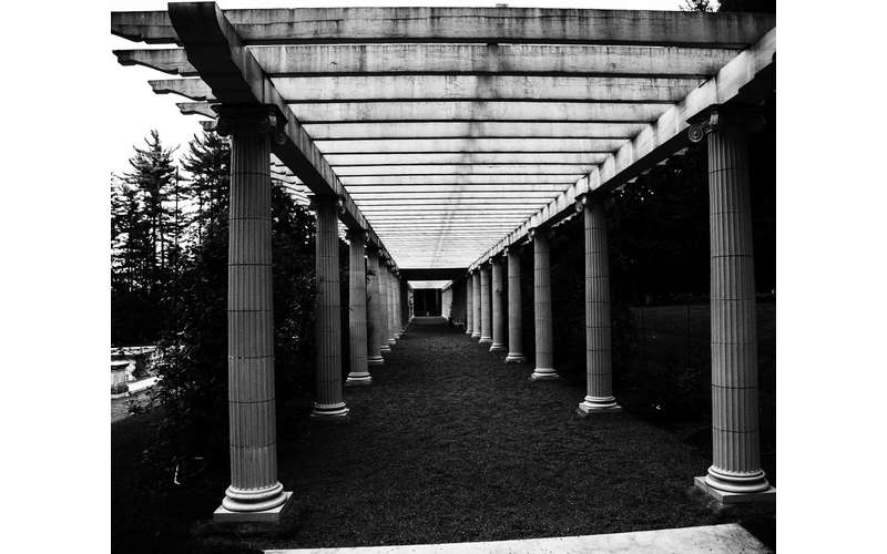 black and white image of columns and a path
