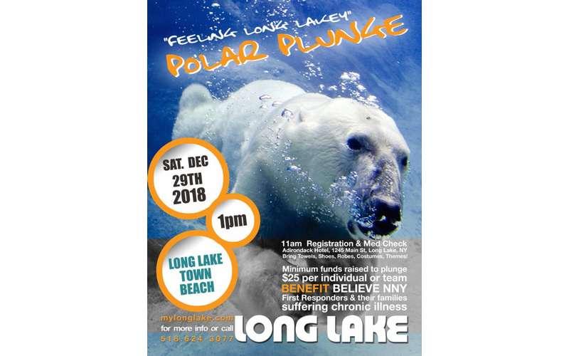 long lake polar plunge poster