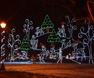Pet Walk Night at Price Chopper/Market 32 Capital Holiday Lights in the Park