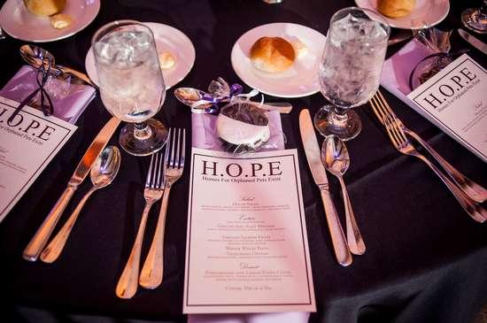 7th Annual Celebration Of H O P E Gala Friday Nov 9