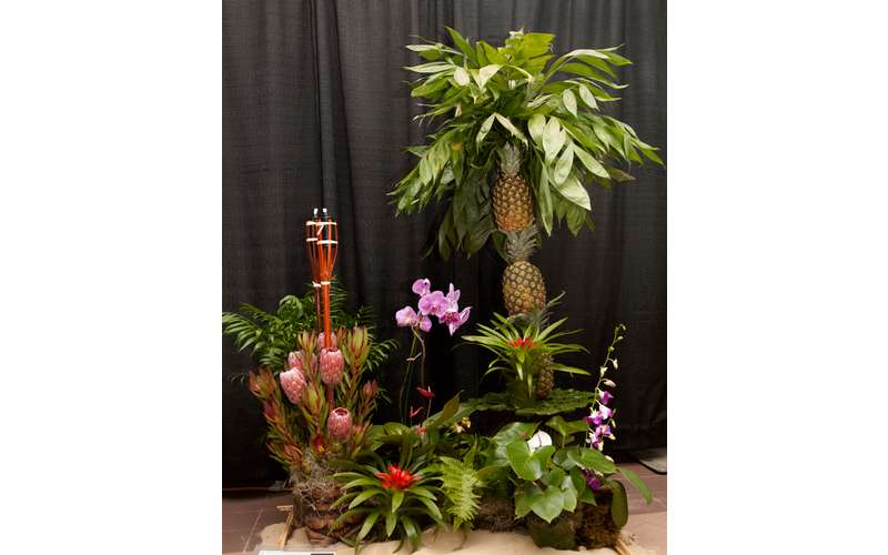 a floral exhibit featuring pineapples
