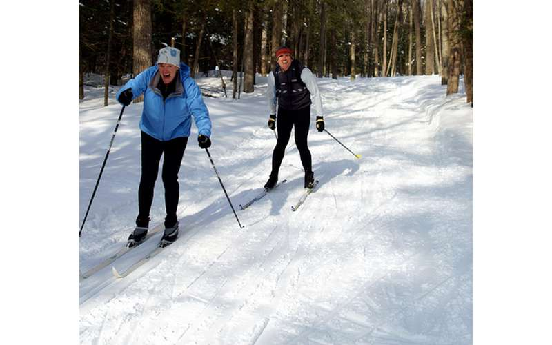 skiers moving along trail