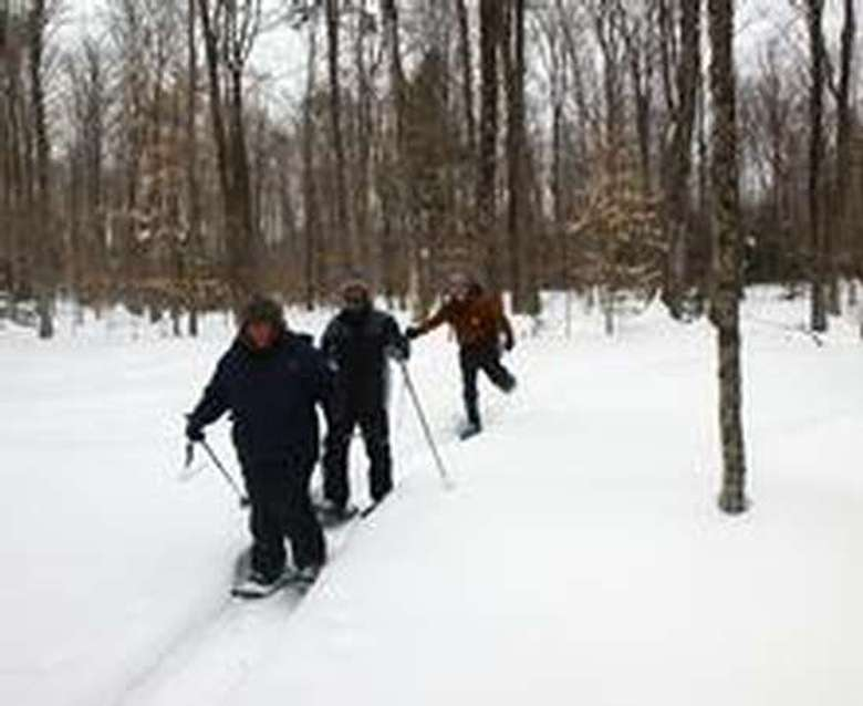 a group of three people snowshoeing