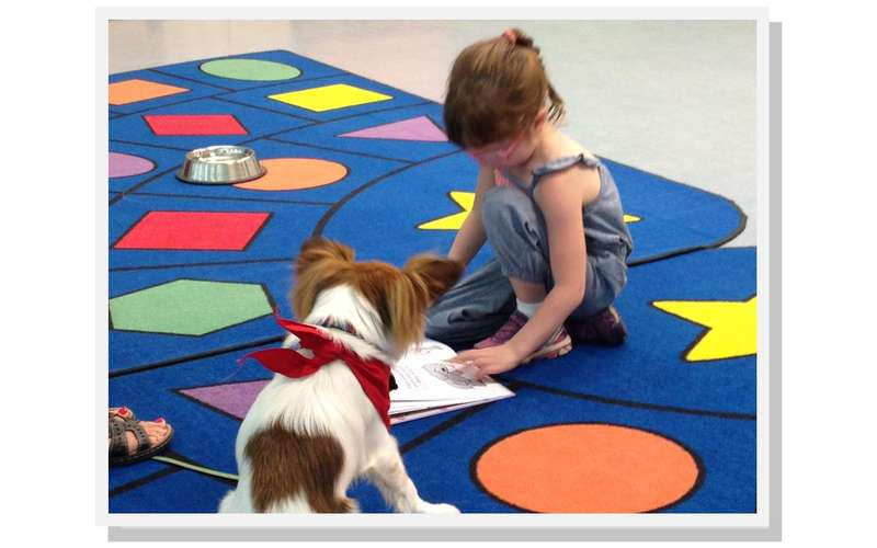 child reading to a therapy dog