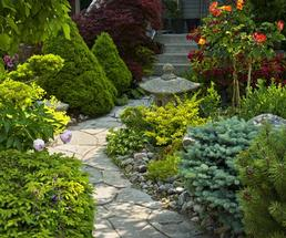 sidewalk and landscaping