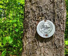 Saratoga trail marker
