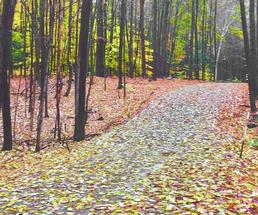 trail in the fall