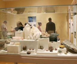 museum rocks display