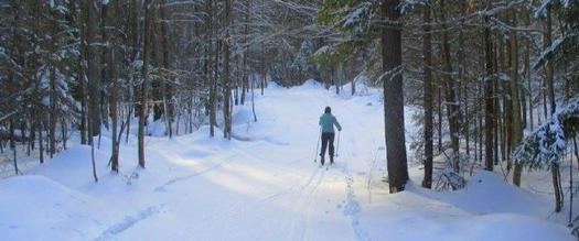 women in blue coat cross country skiing