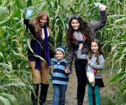 people in front of a corn maze