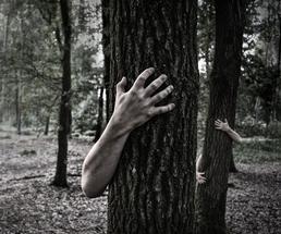 zombie hands poking around trees