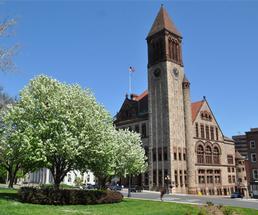 albany ny city hall