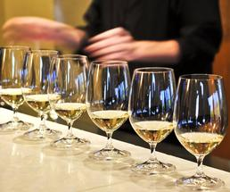 wine glasses at a tasting