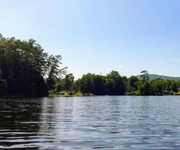 lake, trees, water