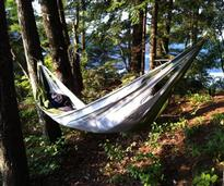 hammock at a primitive camping site