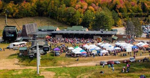 aerial view of fall festival by trees