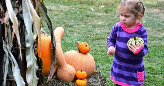 little girl by pumpkins and gourds