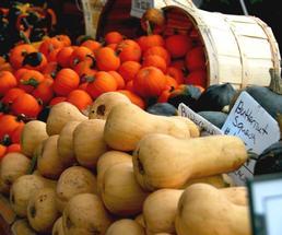 butternut squash and pumpkins