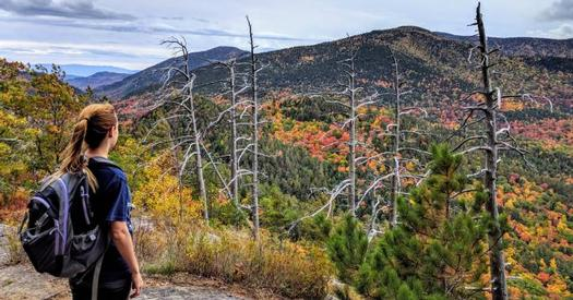 woman on summit looking out at fall foliage