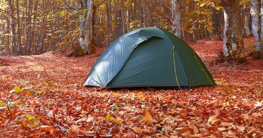 tent in woods in the fall