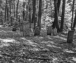 black and white photo of cemetery in the woods