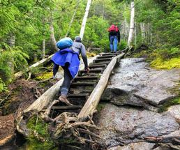 two people hiking up stairs in woods