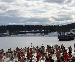 polar plunge participants