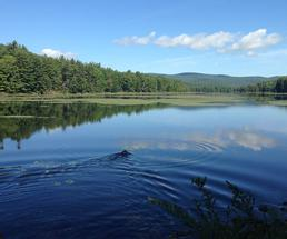 lake in the adirondacks