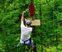 back of a man ziplining through trees