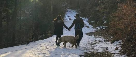couple holding hands walking in snow with dog