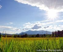 field near wilmington