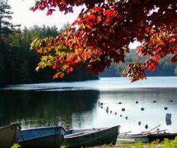 red leaves on foliage, paddle boats or canoes by shore