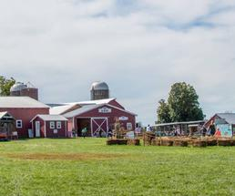 red farm buildings and hay play area