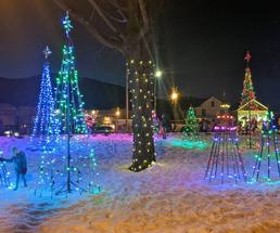 lit up Christmas trees in village at night