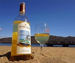 glass and bottle of wine in the sand with the lake in the background