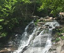 Kaaterskill Falls in New York's Catskill Mountain