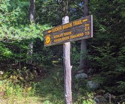 Sucker Brook Trail sign
