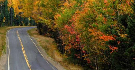 a winding road through fall foliage