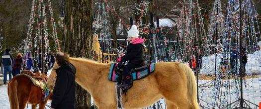 girl on horse in winter