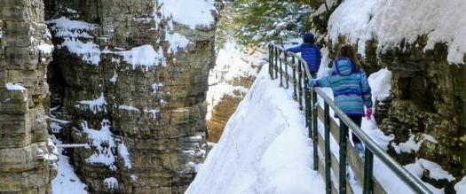 the back of kids walking by a gorge in winter