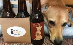 a dog next to dog beer
